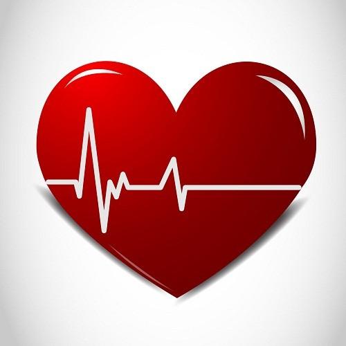 Nhịp tim là gì? Cách dùng công thức tính nhịp tim đúng nhất