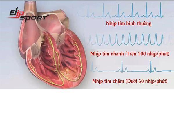 cách tính nhịp tim