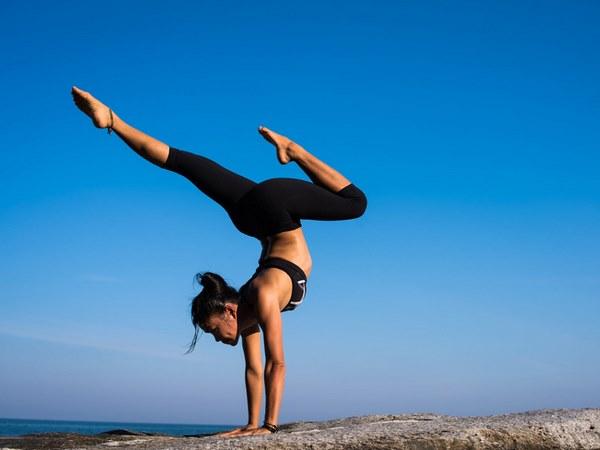 yogi là gì